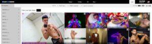 GayCamShows.com Cam Site